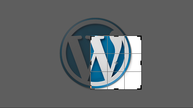 Wordpress Crop Alignment